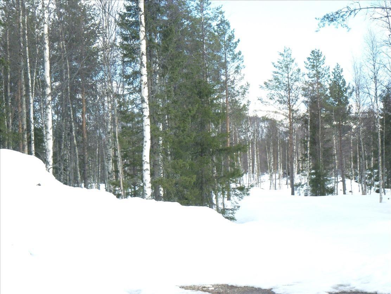 Продажа участков в финляндии аренда виллы в ницце